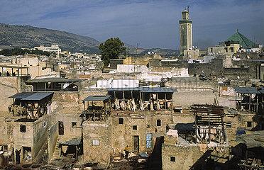 Fes  Marokko  Blick auf eine traditionelle Gerberei in der Medina der historischen Altstadt