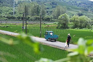 CHINA-ZHEJIANG-Modernisierung der Landwirtschaft (CN)