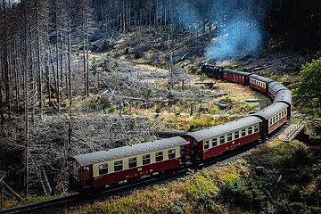 Die Brockenbahn im Harz - Reise durch das Waldsterben