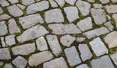 Pflastersteine in der Innenstadt von Meissen