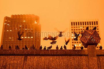 US-SAN FRANCISCO-WILDFIRE-LIFE
