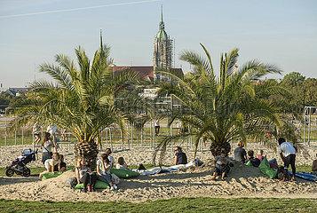 Palmengarten auf der Theresienwiese  Aktion Sommer in der Stadt  Muenchen  September 2020