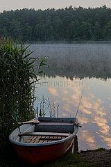 Dranse  Deutschland  Ruderboot liegt am Morgen am Ufer eines Sees