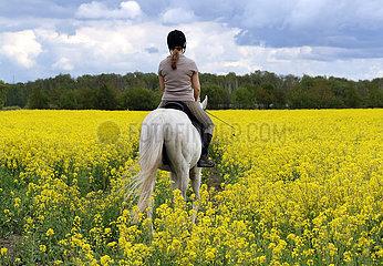 Altlandsberg  Frau reitet durch ein Rapsfeld