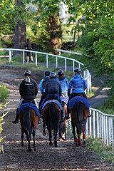 Hoppegarten  Pferde und Reiter bei der Morgenarbeit