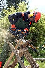 Neuenhagen  Deutschland  junger Mann zersaegt in einem Kleingarten einen Baumstamm mit einer Kreissaege