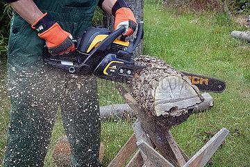 Neuenhagen  Deutschland  Baumstamm wird mit einer Kreissaege zersaegt
