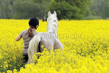 Altlandsberg  Frau fuehrt ihr Pferd durch ein Rapsfeld