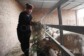 CHINA-GANSU-ZHENYUAN-POVERTY RELIEF (CN)