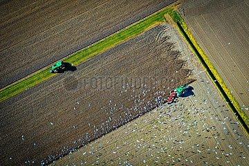 Drohnenaufnahme Bauer beim Pfluegen eines Ackers