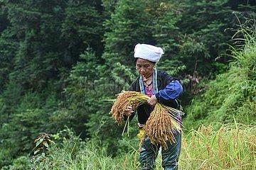 CHINA-GUANGXI-Rongshui-LANDLEBEN (CN)