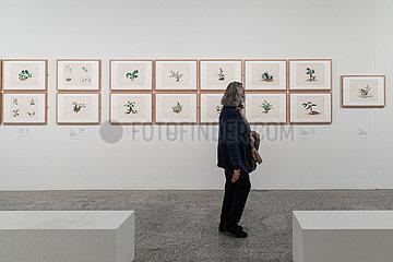 Spanien-MADRID-Asiatische Botanik Kunstausstellung