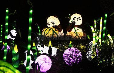 CHINA-CHONGQING-LANTERN SHOW-Illumination (CN)