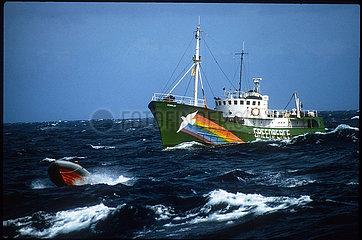 Keine Gute Idee: Atommuellverklappung 1982 im Meer