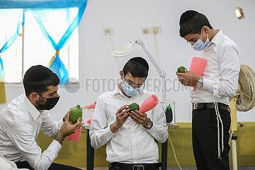 ISRAEL-SAFED-SUKKOT-VORBEREITUNG