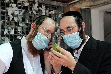 ISRAEL-BNEI BRAK-SUKKOT-VORBEREITUNG