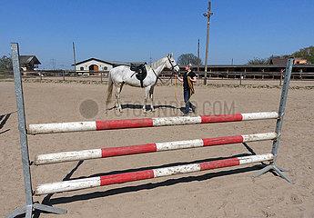 Bruchmuehle  Pferd nach dem Longieren mit Sattel auf einem Reitplatz