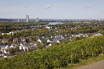 Rhein bei Koenigswinter und Bonn  Nordrhein-Westfalen  Deutschland  Europa