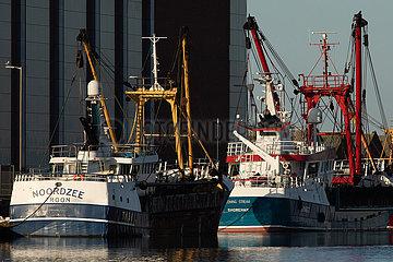 BRITAIN-SHOREHAM-BY-SEA-BREXIT-Handelsgespräche-FISHERIES