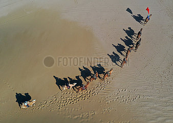 CHINA-INNER MONGOLIA-ARAXAN-MILITIA-TRAINING (CN)