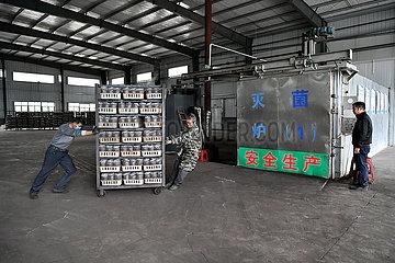 CHINA-JIANGXI-Ganzhou-Landwirtschaft-PILZ (CN)
