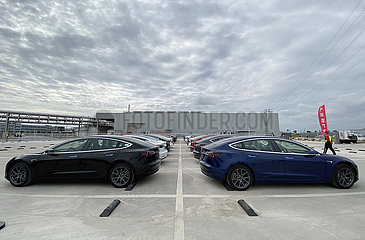CHINA-Shanghai-Tesla-Made-in-China-Modell 3-EXPORT-EUROPE (CN)