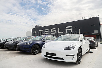 CHINA-Shanghai-Tesla-Made-in-China-Modell 3-EXPORT-EUROPE (CN) CHINA-Shanghai-Tesla-Made-in-China-Modell 3-EXPORT-EUROPE (CN)