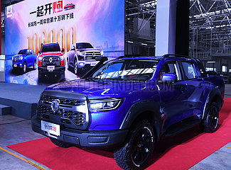 CHINA-CHONGQING-GREAT WALL MOTORS PICKUP-P-Serie (CN)