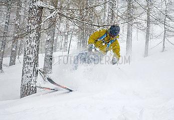 Krippenbrunn  Oesterreich  Skifahrer faehrt im Tiefschnee und stoesst gegen einen Ast