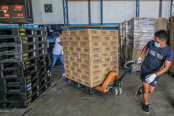PHILIPPINEN-MANILA-TYPHOON GONI-Hilfsgütern VORBEREITUNG