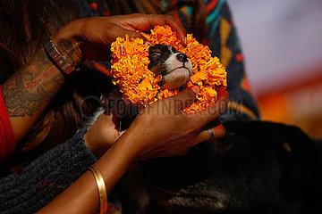 NEPAL-Lalitpur-DOG FESTIVAL
