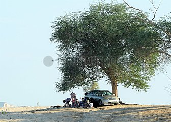 KUWAIT-Jahra GOVERNORATE-COVID-19-WÜSTE PICNIC