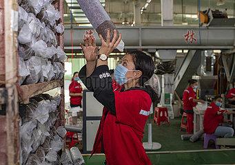 CHINA-XINJIANG-ABSOLUTE POVERTY-Eliminierungs (CN)