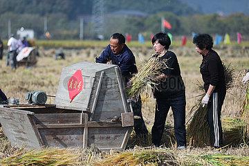 CHINA-ZHEJIANG-HANGZHOU-Autunm HARVEST
