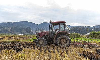 # CHINA-GUIZHOU-Yuping-Landwirtschaft (CN)