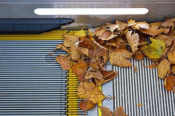 Buntes Herbstlaub liegt auf einer Rolltreppe  Essen  Nordrhein-Westfalen  Deutschland