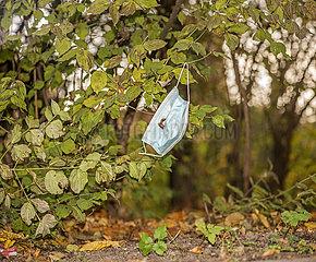 weggeworfener Mundschutz  November 2020