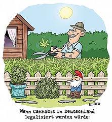 Cannabisanpflanzung