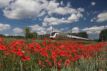 Trebbin  Deutschland  S-Bahn der oesterreichischen VMOBIL faehrt an einem Mohnblumenfeld vorbei