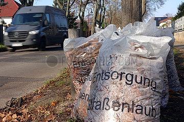 Neuenhagen  Deutschland  Blaetter von Strassenbaeumen liegen in Laubsaecken zur Abholung am Strassenrand