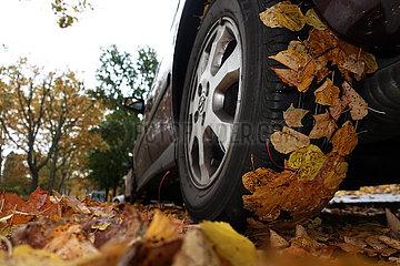 Berlin  Deutschland  Herbstlaub klebt am Reifen eines PKW