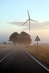 Neu Heinde  Deutschland  Landstrasse am Morgen bei Nebel