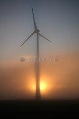 Neu Heinde  Deutschland  Windkraftanlage im Nebel bei Sonnenaufgang
