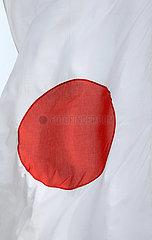 Baden-Baden  Deutschland  Nationalfahne von Japan