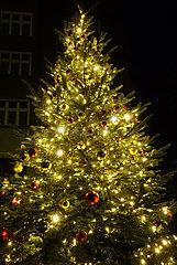 Berlin  Deutschland  festlich geschmueckter Weihnachtsbaum leuchtet in der Nacht vor einem Wohnhaus