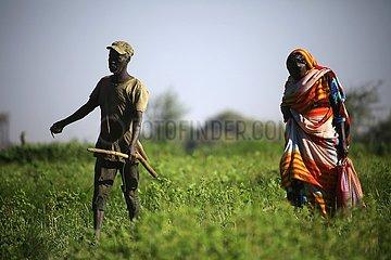 SUDAN-KHARTOUM-AGRICULTURE