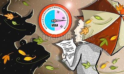 Anleger mit Bulle und Baer im Herbststurm
