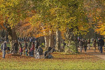 Nachmittag im Englischen Garten  Muenchen  November 2020