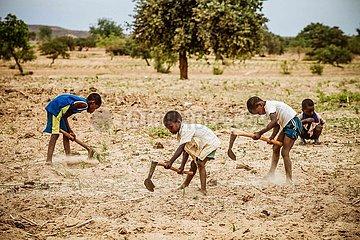 Kinder bei Feldarbeit - Traditionelles Dorf in der Sahelzone