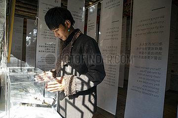 Xinhua Headlines: Young Tibetan becomes new face of idyllic rural life